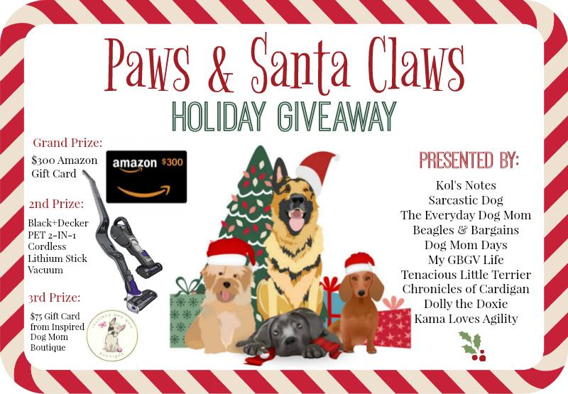 Tis the Season to WIN BIG with the Paws & Claws Holiday Giveaway | ChiPets.com
